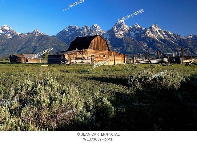 Moulton Barn at base of Grand Teton Mountains, Grand Teton National Park. Jackson Hole, Wyoming, USA