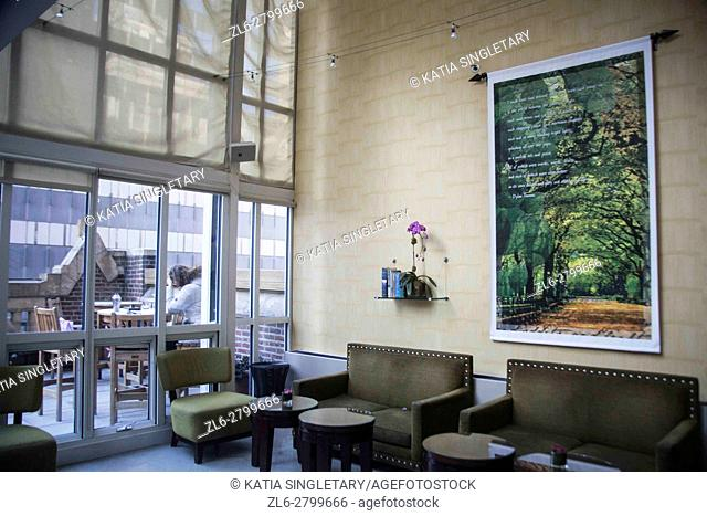 Inside of Lounge rooftop with a outdoor terrace in a New York City Hotel. The inside lounge has modern furniture and paintings