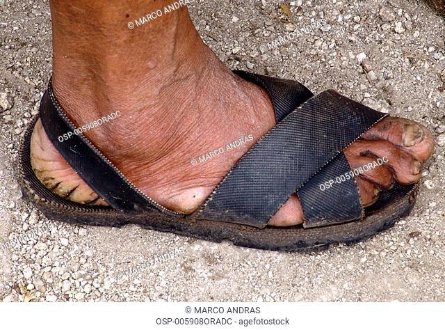 a person human feet wearing sandal