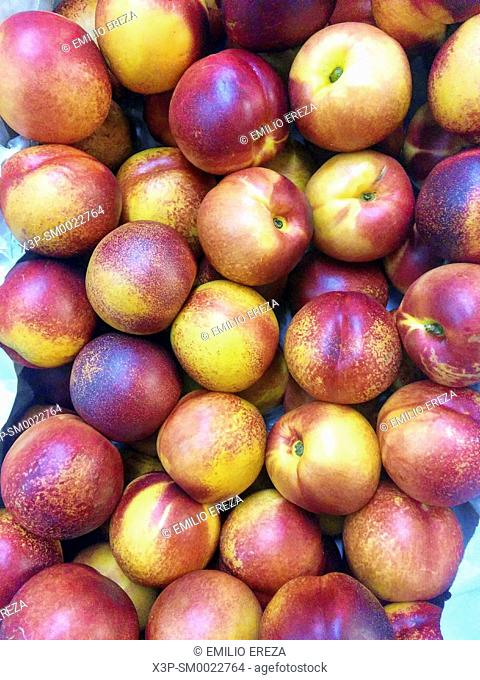 Nectarines for sale