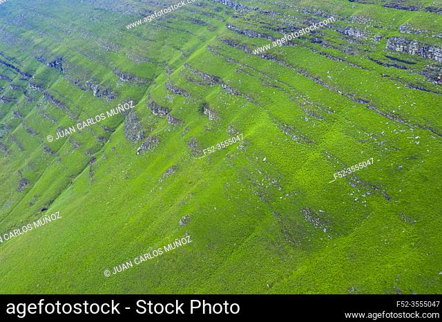 Aerial view of the spring landscape of rocks and grasslands in the Estacas de Trueba. Vega de Pas, Valles Pasiegos, Cantabria, Spain, Europe
