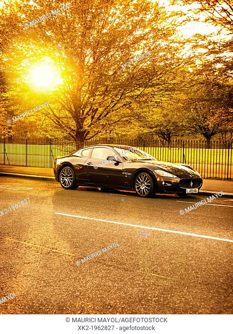 Black sports racing car parked in a sunset in front of a tree