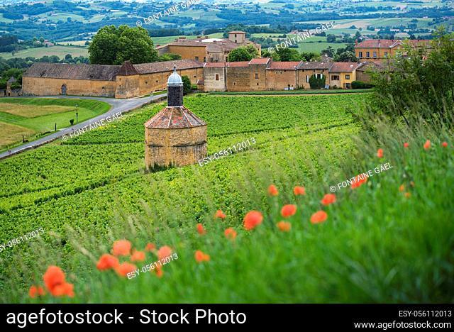 Landscape and village of Bagnols, Beaujolais, France