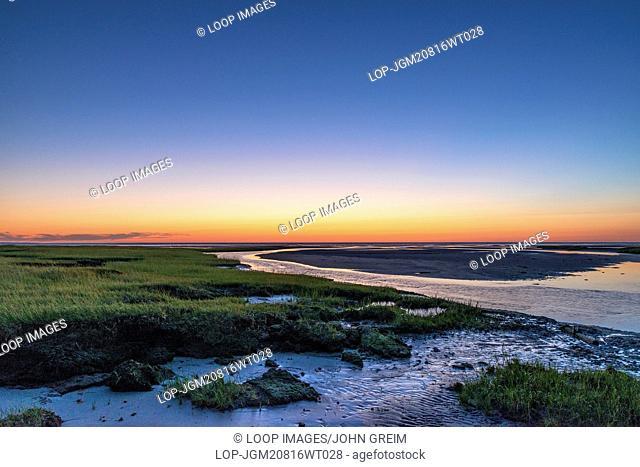 Salt marsh tidal pools at low tide
