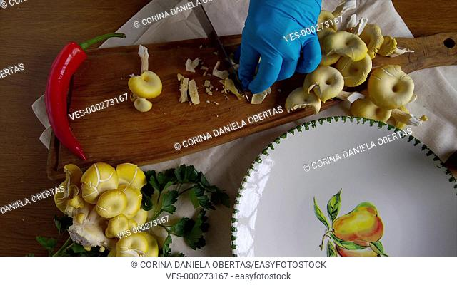 Chopping golden oyster mushrooms on wooden cutting board, high angle view