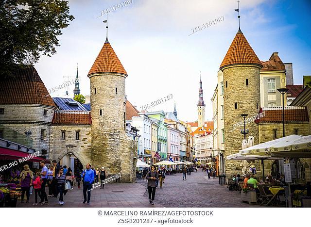 Tallinn Viru Gate, the eastern entrance to the central medieval Old Town. Tallinn, Harju County, Estonia, Baltic states, Europe