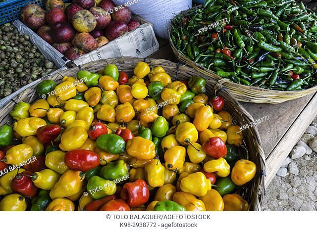 pimientos picantes, Lancetillo, La Parroquia, zona Reyna, Quiche, Guatemala, Central America