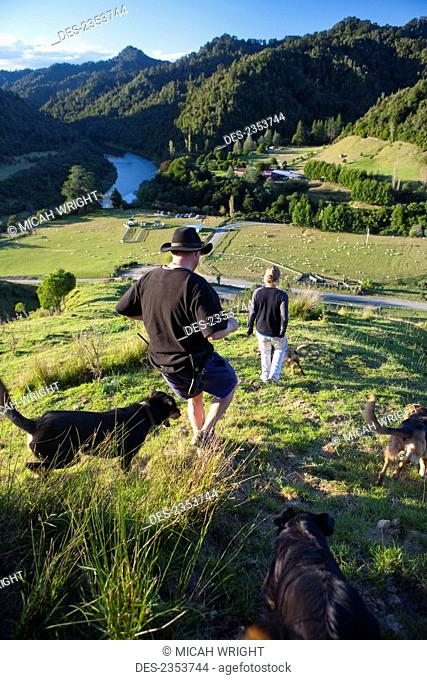 People And Sheep Dogs Admiring The Views Overlooking Blue Duck Valley At Blue Duck Lodge, In The Whanganui National Park; Whakahoro, New Zealand