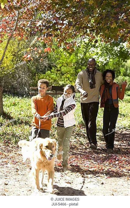 Family walking golden retriever in autumn park, two children 7-9 holding dog lead, smiling