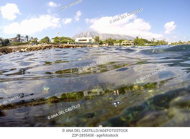 Mediterranean underwater seaweed algae in Denia Javea Alicante spain