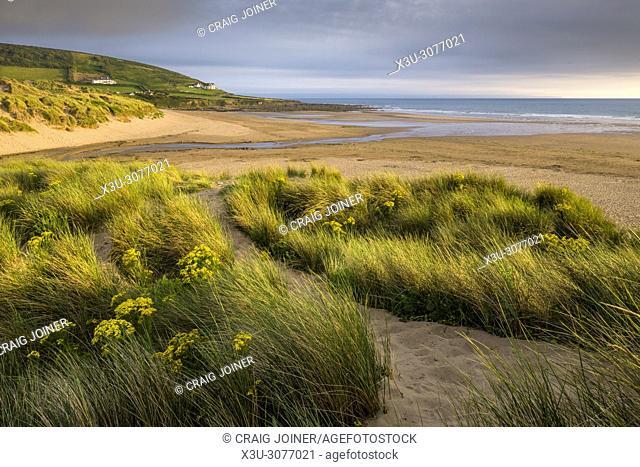 The sand dunes at Croyde Bay on the North Devon Coast, England