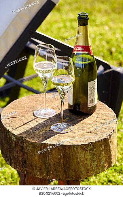 Bottle of champagne and two glasses, Basque farmhouse, Deba, Gipuzkoa, Basque Country, Spain, Europe