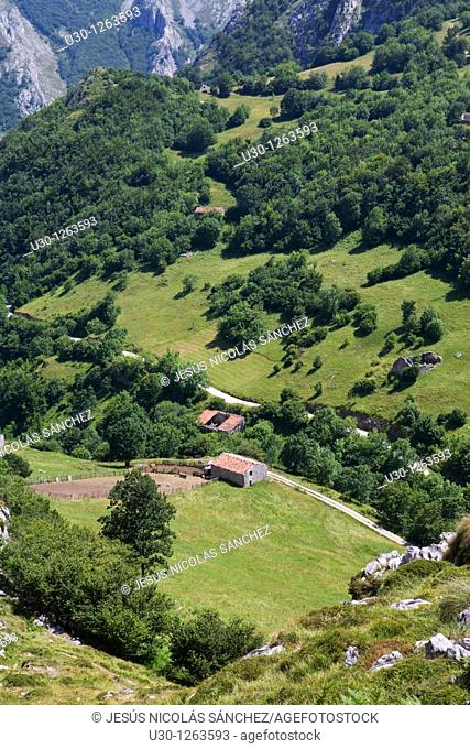 Forests, meadows and Shepherds huts in the Urrieles massif, in the Picos de Europa National Park, Asturias, Spain