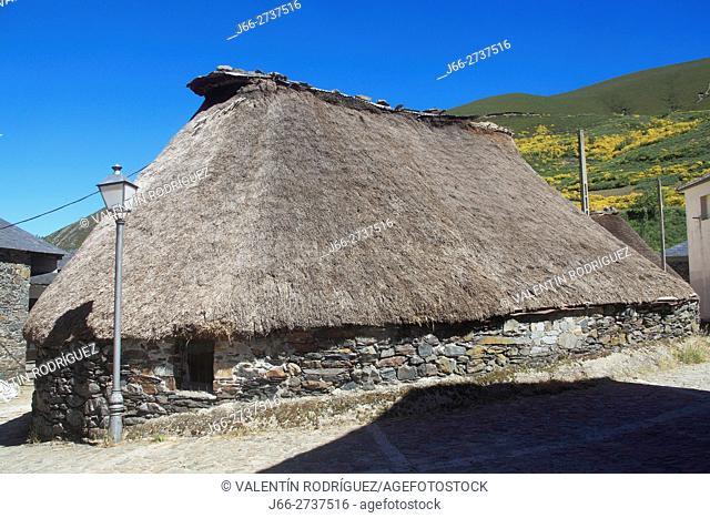 Palloza (traditional cnstruction, in Balouta. Valley of Ancares. León