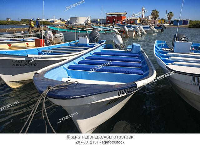 Boats for Sightings of gray whales calving & breeding habitat, Bahia Magdalena in Sea of Cortes, Baja California Sur, Mexico