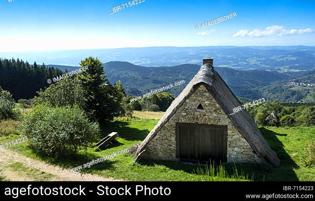 Farm (Jasserie), summer pasture specific to the Forez mountains at col of Supeyres, Livradois-Forez regional natural park, Puy de dome department
