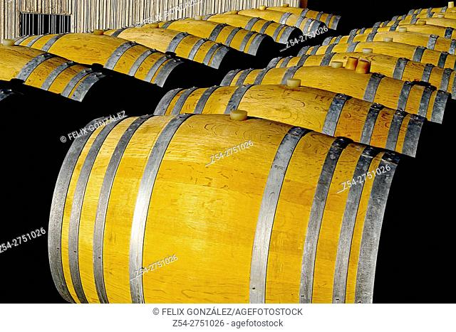 Verdejo, Rueda wine barrels at La Seca, Castile And Leon, Valladolid, Spain