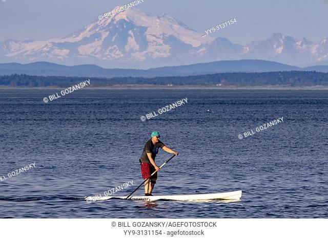 Stand-up Paddleboarder off Cattle Point in Uplands Park, Oak Bay near Victoria, Vancouver Island, British Columbia, Canada