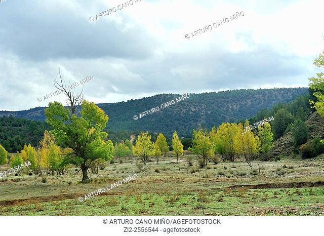 Valley of the river Ablanquejo. Alto Tajo Natural Park. Huertahernando, Guadalajara, Spain