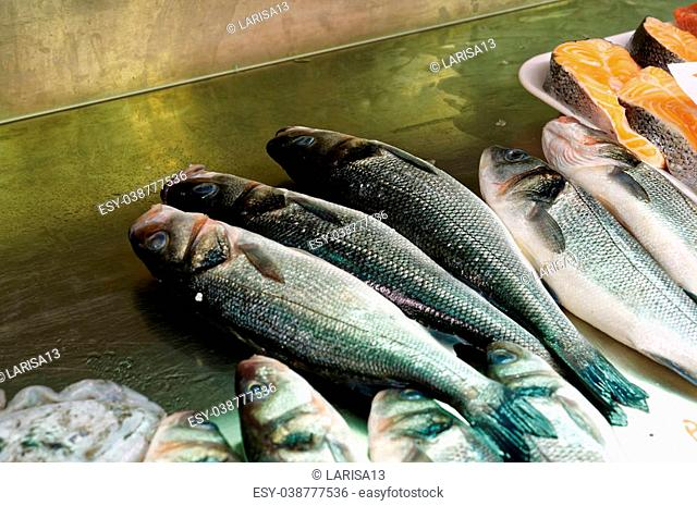 Fresh Sea Bass, salmon of Mediterranean cooking on the shelves, the tables of the fish market