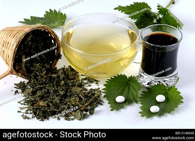 Glass with nettle juice, cup with nettle tea, nettle tablets and dried leaves (Urtica dioica)