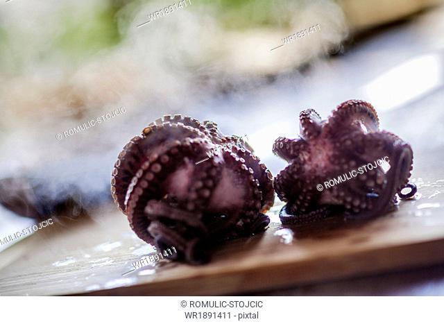 Octopus on Cutting Board