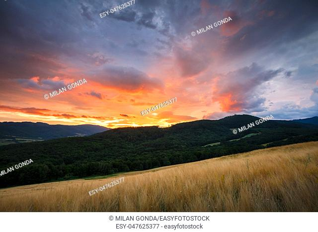 Rural landscape with pastures and forests in the valley of Ipel river in southern Slovakia.