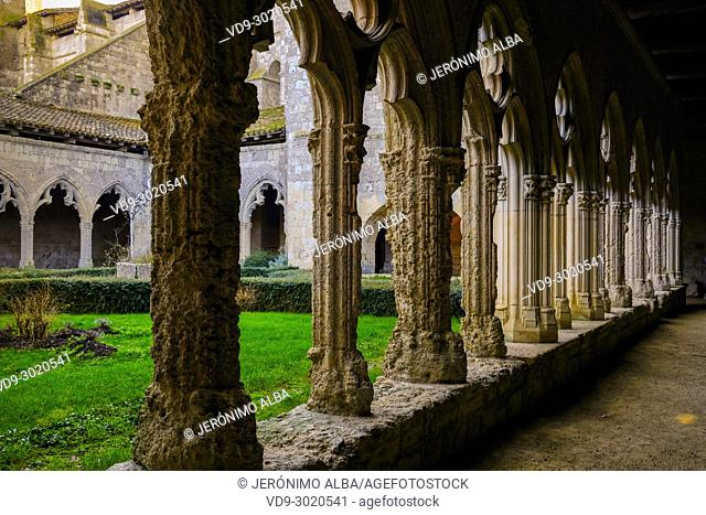Collegiate Saint-Pierre, cloister. Village of La Romieu on the way of Saint Jacques de Compostelle. Le Gers Department, New Aquitaine, Midi Pyerenees