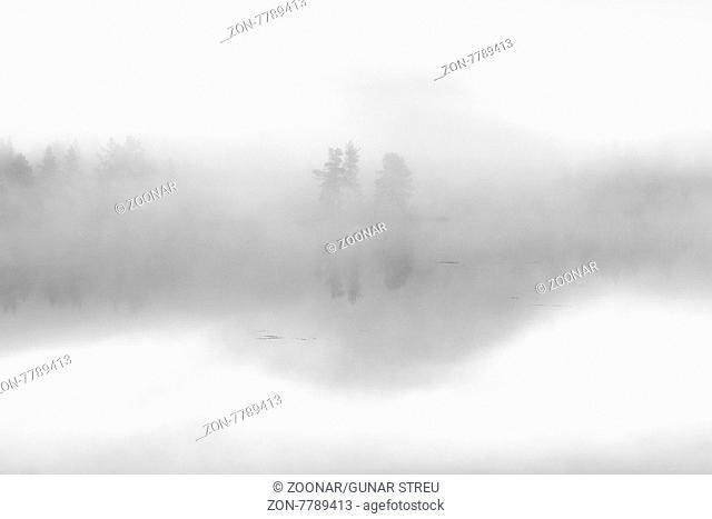 Morgendaemmerung an einem Waldsee, Norrbotten, Lappland, Schweden, August 2015