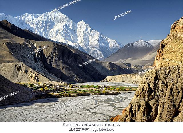 The village of Chuksang (2900m) surrounded by fields in the valley of the Kali Gandaki river, Nilgiri peak (7061m). Nepal, Gandaki