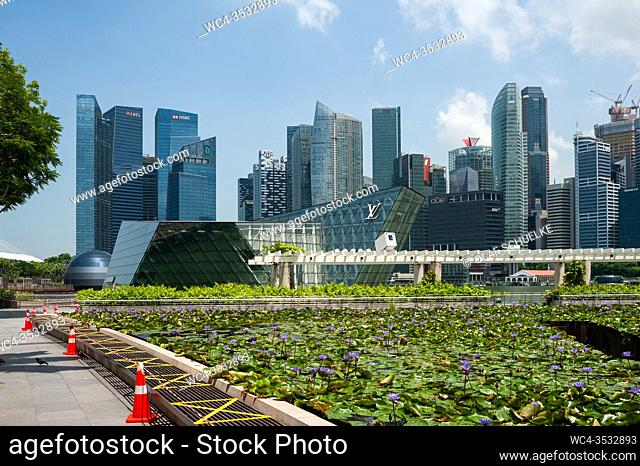 Singapore, Republic of Singapore, Asia - View of the city skyline with skyscrapers in the central business district at Marina Bay and a lotus flower pond in the...