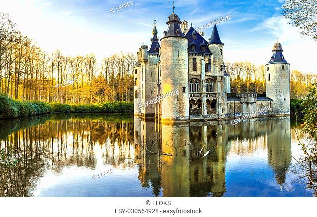 Beautiful Castle, Antwerpen Region, Belgium