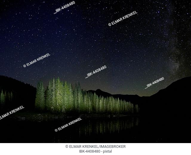 Starry sky at Lake Obernbergersee, forest, Oberberg, Tyrol, Austria