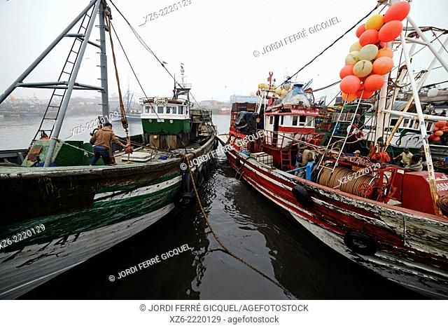 Boats at Essaouira fishing harbour in the morning, Morocco, Africa