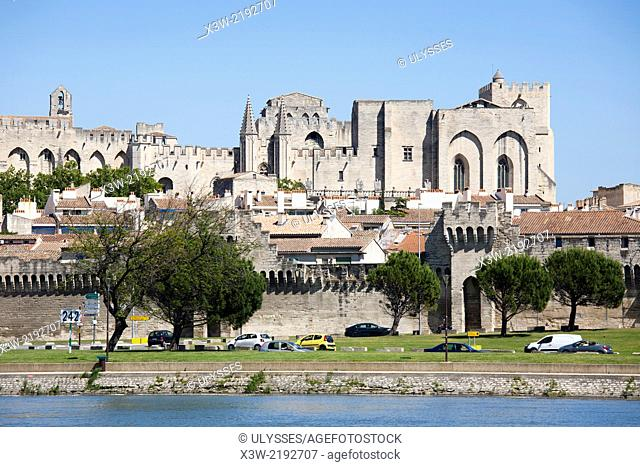 town view and rhone river, avignon, provence, france, europe