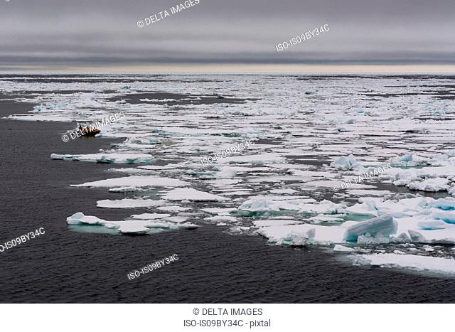 Tourists on inflatable boat exploring Polar Ice cap, 81north of Spitsbergen, Norway