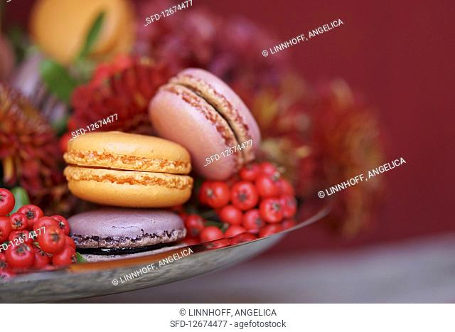 Passion fruit, cassis and blackberry macarons on a pastry platter (close-up)