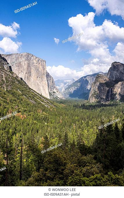 View of mountains and valley forest, Yosemite National Park, California, USA