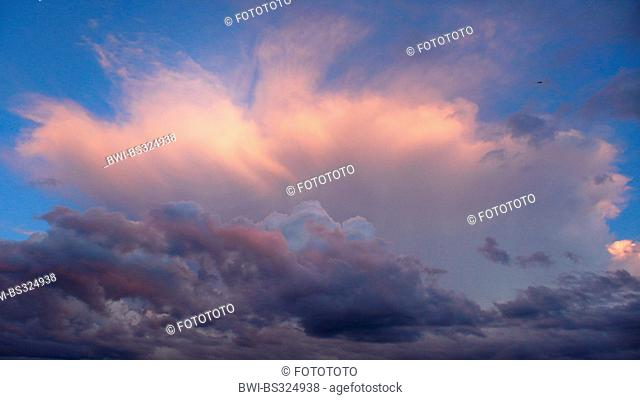 dramatic clouds in the evening glow, Germany, North Rhine-Westphalia