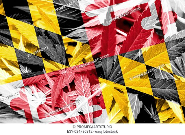 Maryland State Flag on cannabis background. Drug policy. Legalization of marijuana