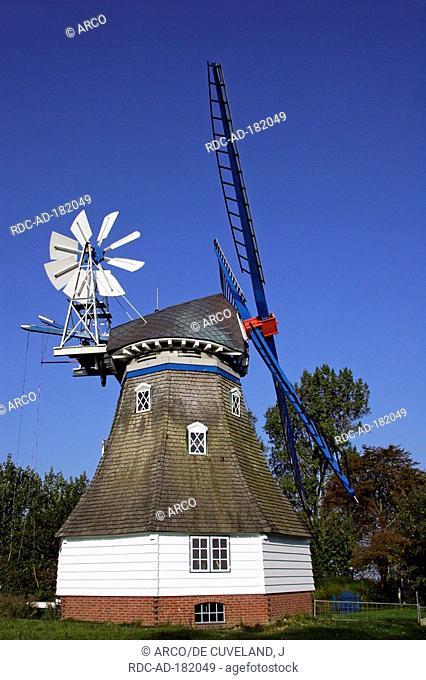 Old windmill 'Immanuel', dutch style, near Marne, Dithmarschen district, Schleswig-Holstein, Germany