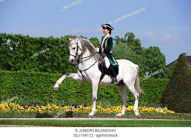 woman riding on Lusitano horse