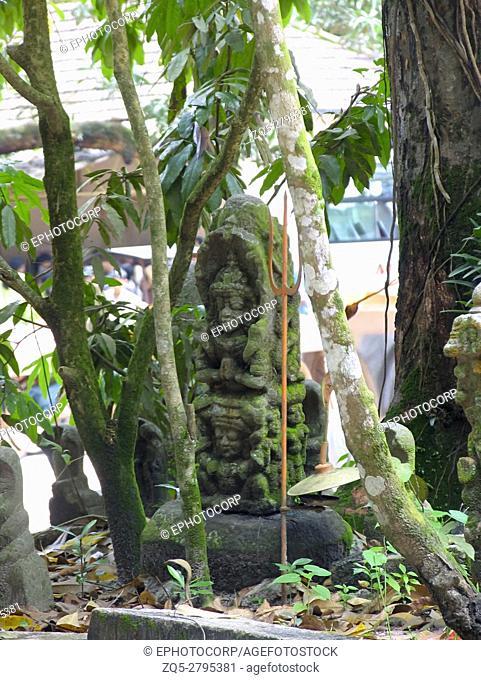 Statue of Nagaraja (King of Snakes), Nagaraja Temple, Mannasala, Kerala, India