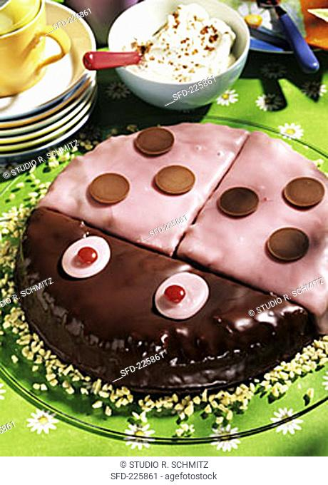 Pink beetle cake with chocolate drops for children's party