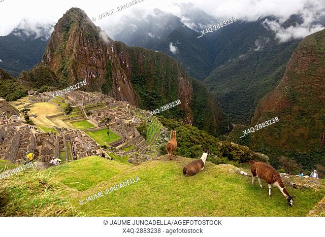 Spiritual morning mist rises over Inca head mountain at Machu Picchu with Huana Picchu in background