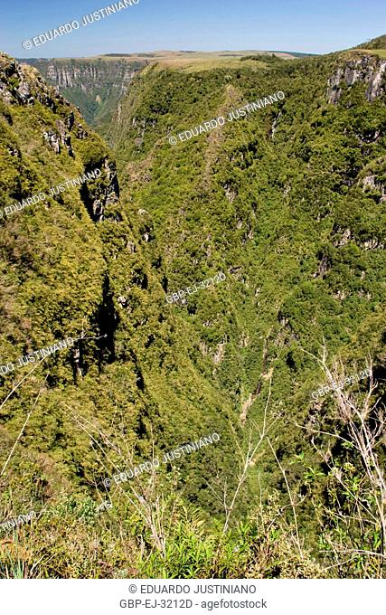 Area of Campos of Top with Scarp, Trimmed of the Mountain, Right Á Monte Negro, São José dos Ausentes, Rio Grande do Sul, Brazil