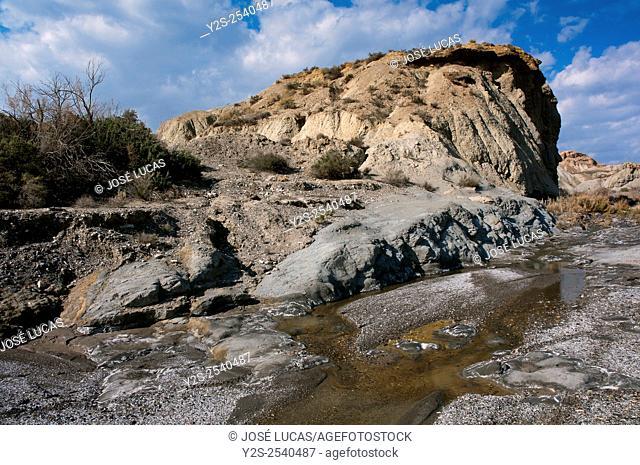 Natural Spot Tabernas Desert - desert wadi after rain, Almeria province, Region of Andalusia, Spain, Europe
