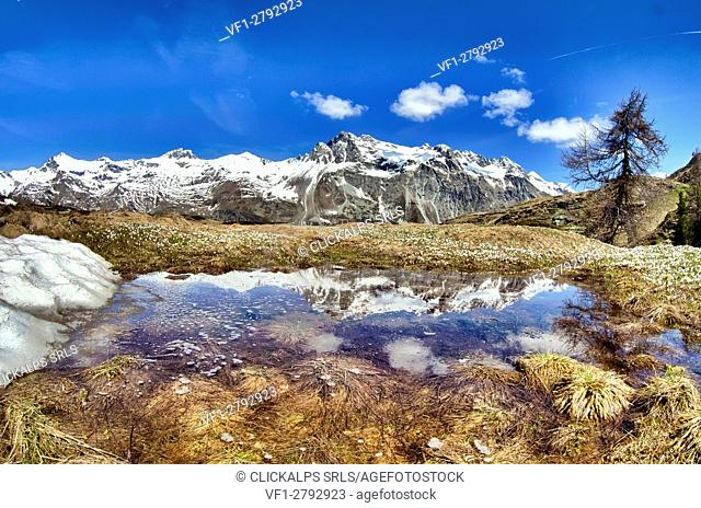 The snow gives a water puddle space near Val di Fex, where the Piz Lagrev, still covered in snow, is reflected, Engadine, Switzerland Europe