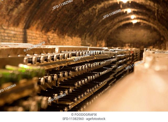 A champagne cellar