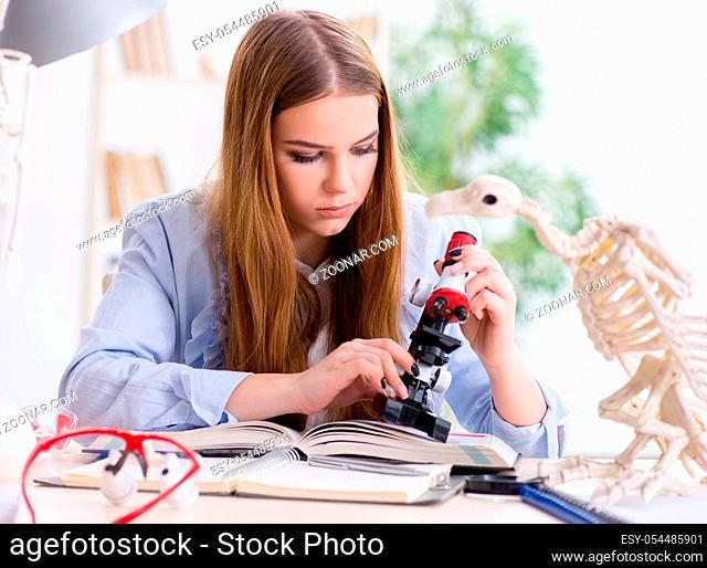 The student examining animal skeleton in classroom
